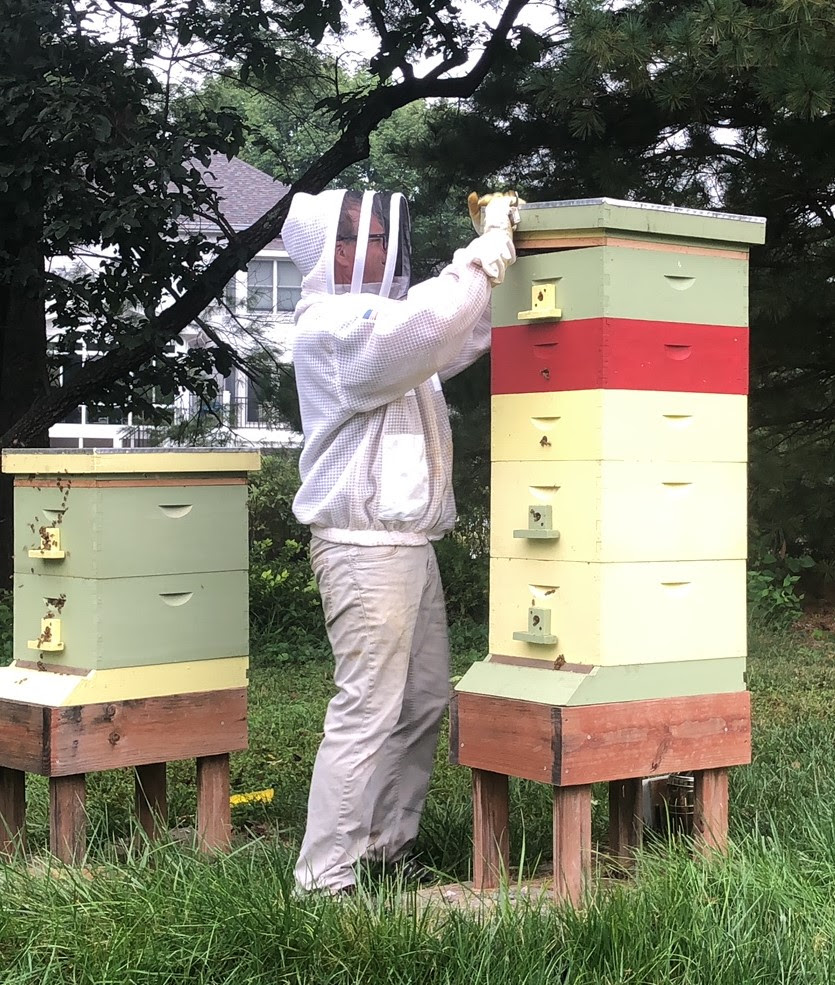 Fall bee keeping harvest